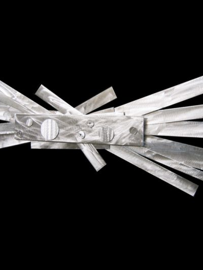Ameba - Nicholas Yust Fine Metal Art